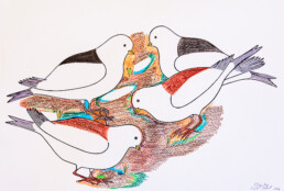 Birds Eating Pauojoungie Saggiak Lineage Arts Gallery Ottawa
